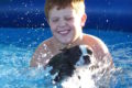 Best Dog Pool. Pools for Pooches Reviewed
